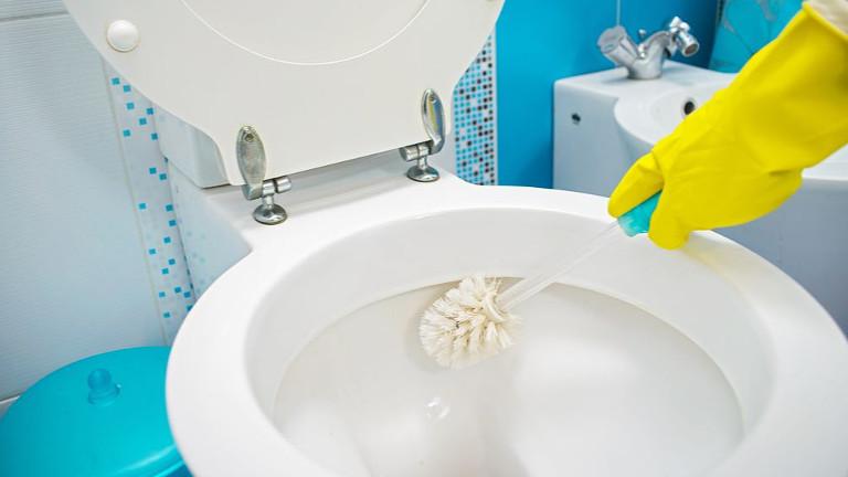 limpiar bien un inodoro por partes