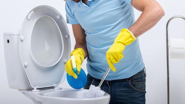 limpiar el inodoro con productos caseros